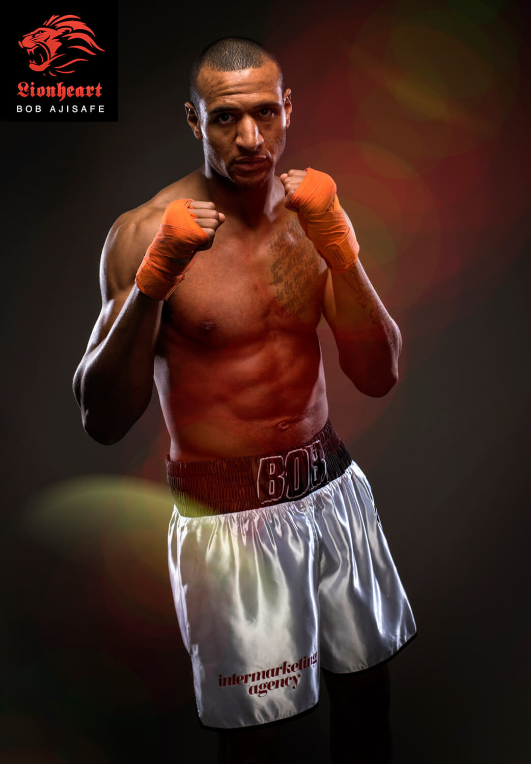 Bob-Boxer-12-with-logo-website